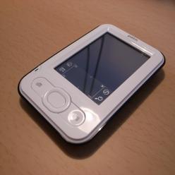 Palm001
